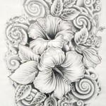 14-drawings-of-flowers-hibiscus.preview